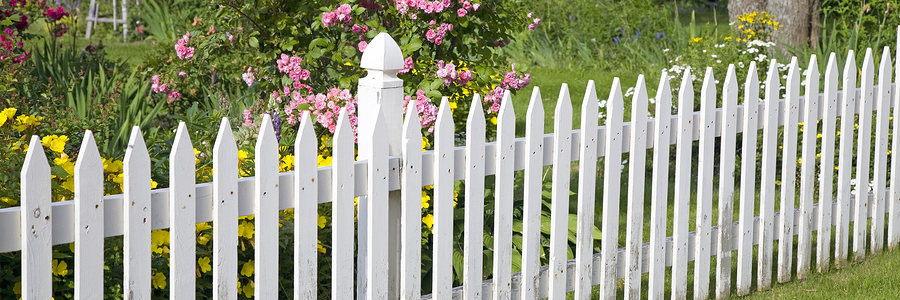 rustic white picket fence with roses and other flowers in th